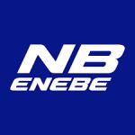 """Теннисные столы """"Enebe"""" (Испания)"""